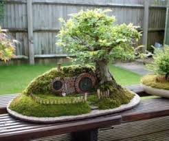 tiny hobbit home carved in bonsai trees bonsai tree office window