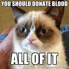 you should donate blood all of it - Grumpy Cat | Meme Generator via Relatably.com