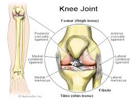 Image result for images of dealing with running knee injuries