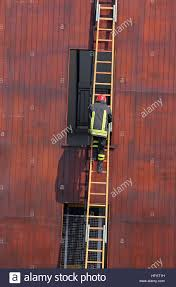 chief of the fire department as it climbs up the ladder during a stock photo chief of the fire department as it climbs up the ladder during a training exercise in the firehouse