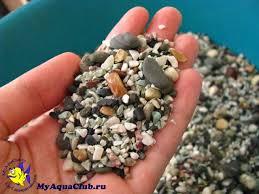 Подготовка аквариумного <b>грунта</b>