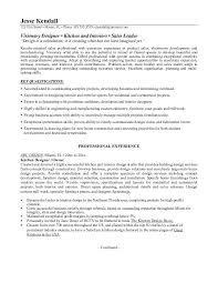Resume Template      Web Designer Professional Web Designer Free     In the data architect resume  one must describe the professional profile of  the applicant as well as his educational background  skills and  experience