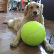 <b>24CM Giant Tennis Ball</b> For Dog Chew Toy Big Inflatable Tennis ...