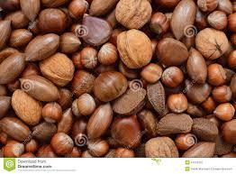 """Résultat de recherche d'images pour """"chataignes marrons noix"""""""