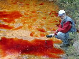 Resultado de imagen de Los microbios de Riotinto