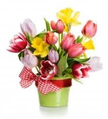 Výsledek obrázku pro jarní květiny kresba