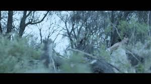 <b>Karnivool</b> 'Eidolon' - Official Video - YouTube
