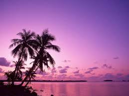 لكل محبي صور الطبيعة  اكبر تجميع لصور الطبيعة Images?q=tbn:ANd9GcT-SZIOgMgfK_kXwwKRTKq7xKDDVdErSHla8R6FXILWEDaBoe9e