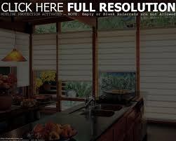 kitchen window treatment ideas double sink