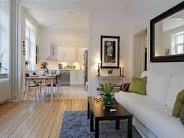 apartment cozy bedroom design: cozy apartment living room ideas home interior design