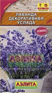 <b>Лаванда декоративная</b> «<b>Услада</b>», 0,1 г — Купить за 90 тг.