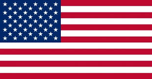 Image result for american flag clip art