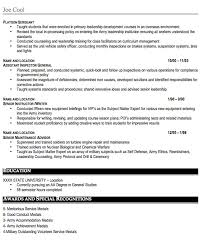 professional resume military experience professional resume  military resume sample free resume template professional military
