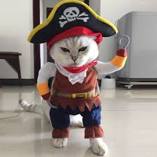 Pet Pirate <b>Costume</b> Pet <b>Halloween</b> Christmas <b>Cosplay</b> Dress <b>Funny</b> ...