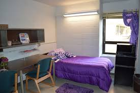 plywood decor north carrick residence hall room pinterest loft beds and large plywood asian paints colour combinations alarm home decor