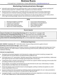 functional cv template for excel  pdf and wordcv template marketing manager