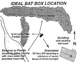 Choosing a bat house sitesetupmap