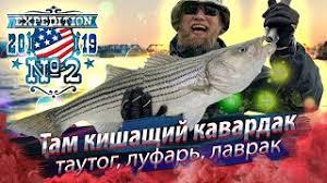 Когда под тобой КИШИТ рыба. Морская рыбалка в проливе Лонг ...
