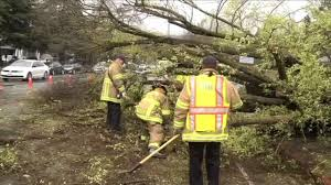 Image result for public works rain damage,  Pacifica, CA picture