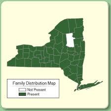 Anacardiaceae - Family Page - NYFA: New York Flora Atlas - NYFA ...