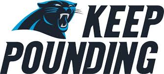 Image result for carolina panthers