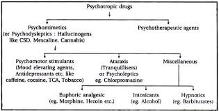 drugs essay essay on drugs definition classification and moral implication psychotropic drugs