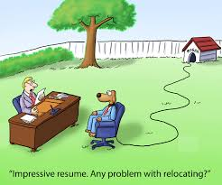 stay at home mom resume and job search advice resumewriterdirect job interview asked to relocate