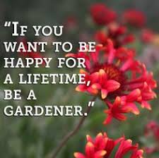 Gardening Quotes from Proven Winners on Pinterest | Garden Quotes ... via Relatably.com