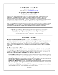 email marketing resumes template email marketing resumes