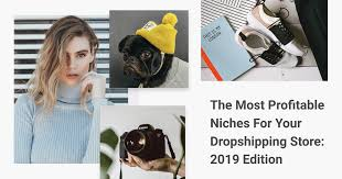 The Most Profitable Niches For Your <b>Dropshipping</b> Store: 2019 Edition