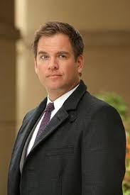 Image result for michael weatherly