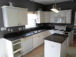 Black White Kitchen Designs White Kitchen Countertops Red Kitchen Countertops White