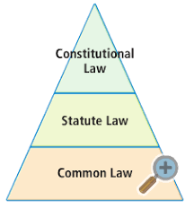 common law and statute law essay   touch repairde weak version of contrastive analysis hypothesis