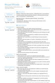 internal auditor resume samples   visualcv resume samples databaseinternal auditor resume samples