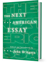 american essay john d the next american essay