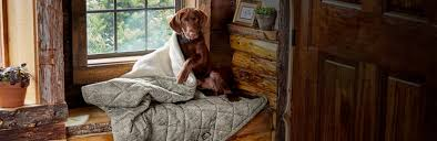 Dogs in the House - <b>Dog</b> Sofa Covers & Furniture Protectors