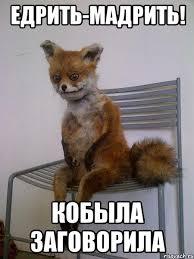 Заявления Запада о Савченко - антироссийская информационная кампания, - представитель МИД РФ Захарова - Цензор.НЕТ 5969