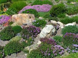 landscaping for sloping backyards colorful hillside rock garden planting ideas backyard landscaping ideas rocks