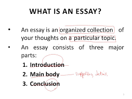 essay writing lecture  recap what is a paragraph paragraph  an essay is an organized collection of your thoughts on a particular topic an essay