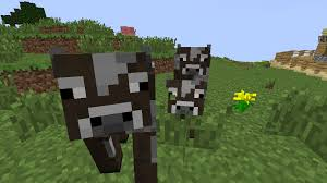 Image result for minecraft baby cow