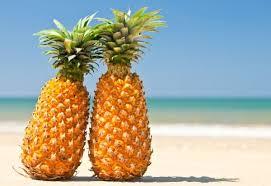 Znalezione obrazy dla zapytania ananas