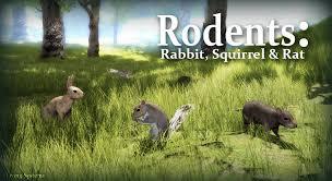 Small Animal Behavior Pack: <b>Rabbit</b>, <b>Squirrel</b>, Rat in Characters ...