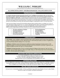 professional resume examples resume giant global security analyst resume sample