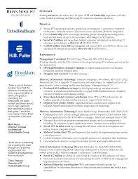 cio resume resume badak director information technology resumes
