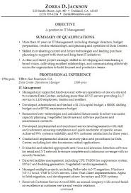 a well written essay example buy resume samples summary brief        how to write a examples of professional summary a well written essay example buy resume samples