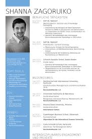 Resume Examples Civil Engineer Sample Resume With Summary Of ... american resume format download knock em dead resume writing career coaching services european curriculum vitae format