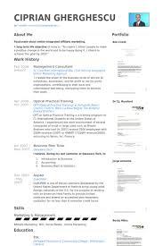 consultant en gestion exemple de cv   base de données des cv de    management consultant exemple de cv