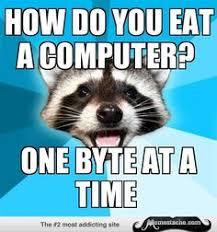 Lame Pun Coon Memes on Pinterest | Puns, Meme and Animal Memes via Relatably.com