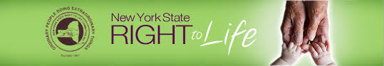 pro life essay contest  new york state right to life search form