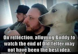 on reflection allowing buddy to watch the end of old yeller might ... via Relatably.com